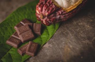 تقدیر از کمپانی لوکر شکلات به دلیل حمایت از کشاورزان کاکائو
