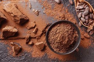 بازار جهانی فرآوری کاکائو در سال 2020 به 4.86 میلیون تن رسید!