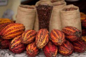 توجه ویژه به شکلات در پرو